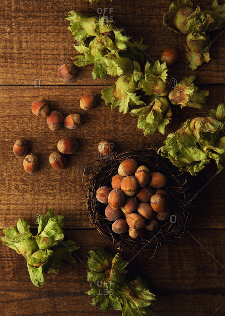 Hazelnuts in a nest on wooden surface
