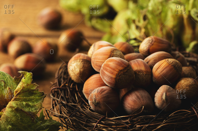 Close up of hazelnuts in a nest on wooden surface