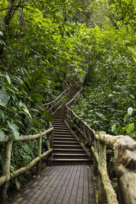 Stairs at La Fortuna Waterfall- La Fortuna- Costa Rica
