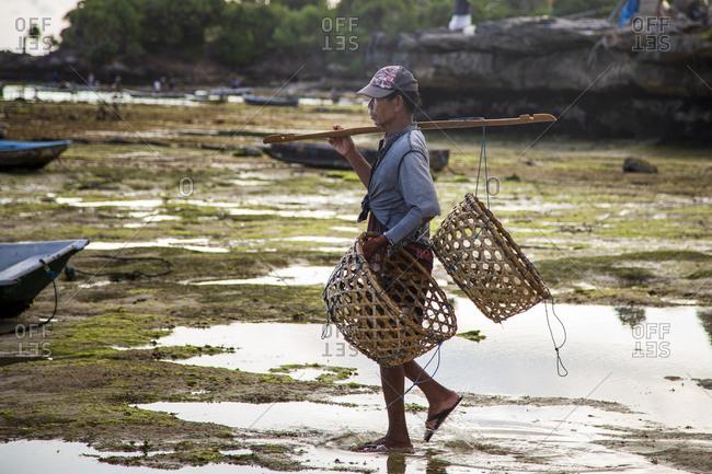 Indonesia, Bali, Nusapenida - April 27, 2014: Seaweed farmer carrying baskets walks across beach