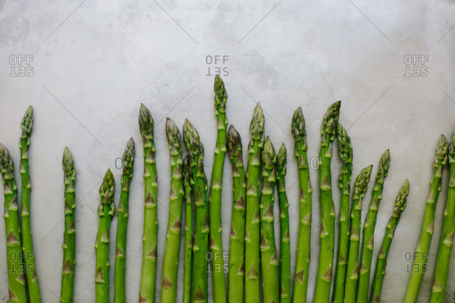 Asparagus spears lined up on a rustic gray background
