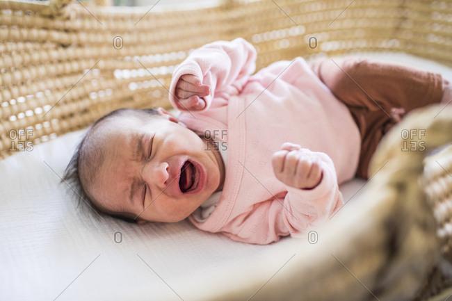 newborn scream bed