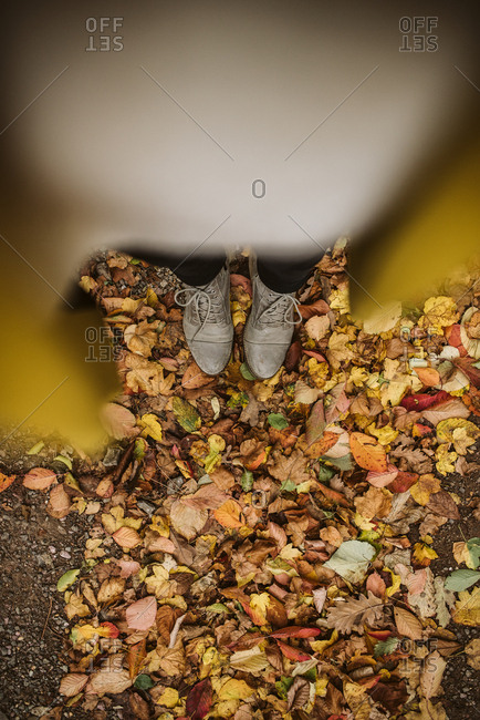Overhead view of a woman wearing grey shoes and standing in leaves