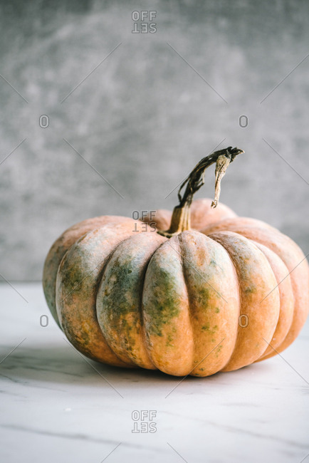 Small orange pumpkin on light background with copy space