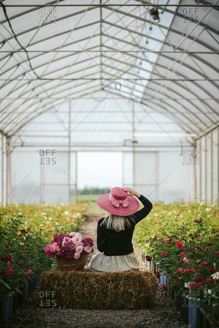 Rear view of a woman in a pink hat on a bale of hay in a green house