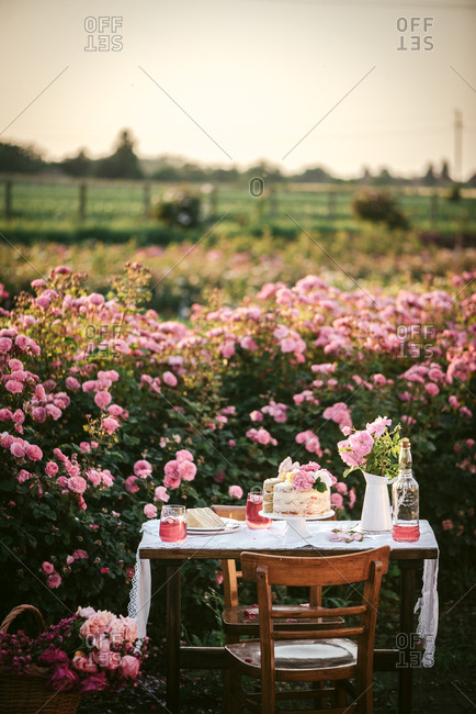 Cake and wine on an outdoor table in a flower garden