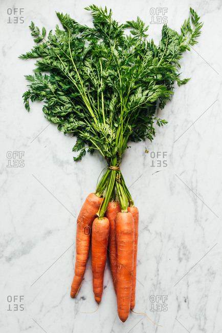 Bunch of fresh picked carrots on white marbled surface