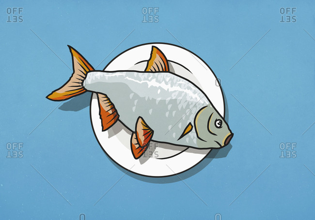 Whole dead fish on dinner plate