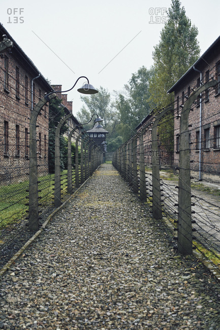 Path between fences at Auschwitz Concentration Camp