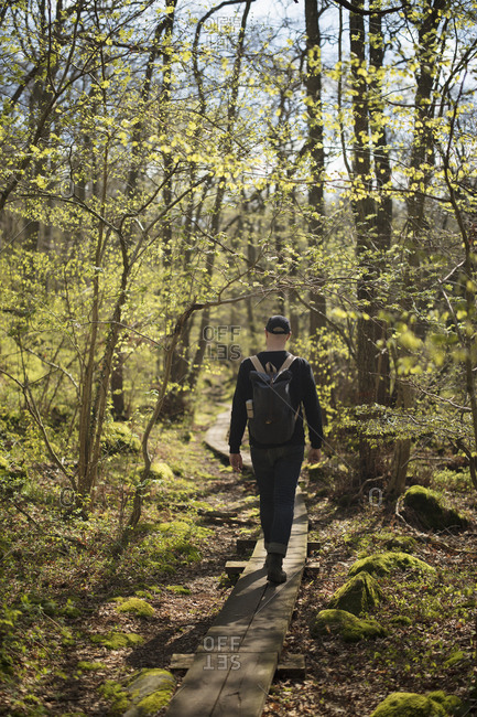 Man hiking in forest - Offset