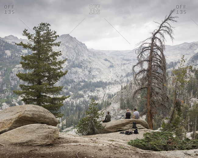 Men sitting on log in Sequoia National Park in California