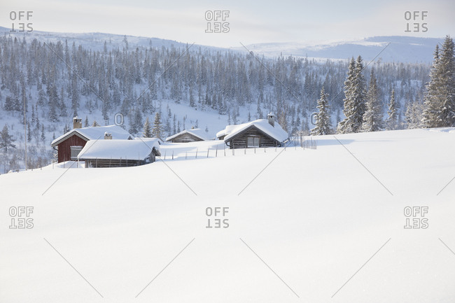 Log cabins covered in snow