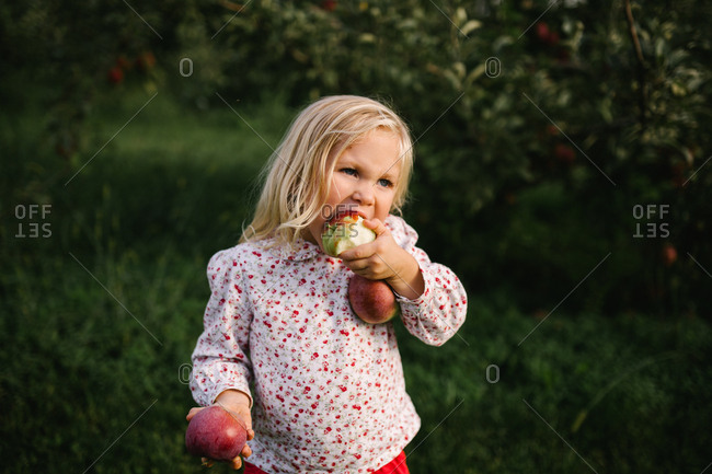 Blonde girl eating an apple in an orchard with multiple apples in her arms