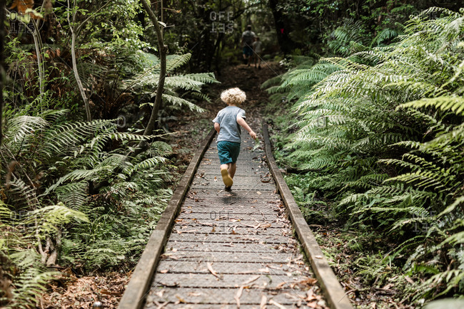 Young child running on fern lined path through a forest