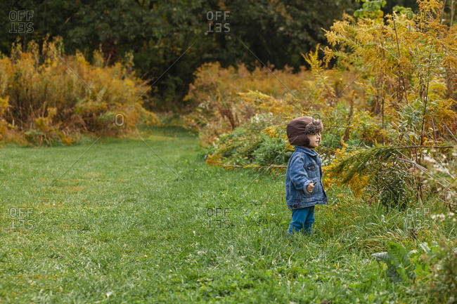A small toddler stands bundled up in a golden field in autumn