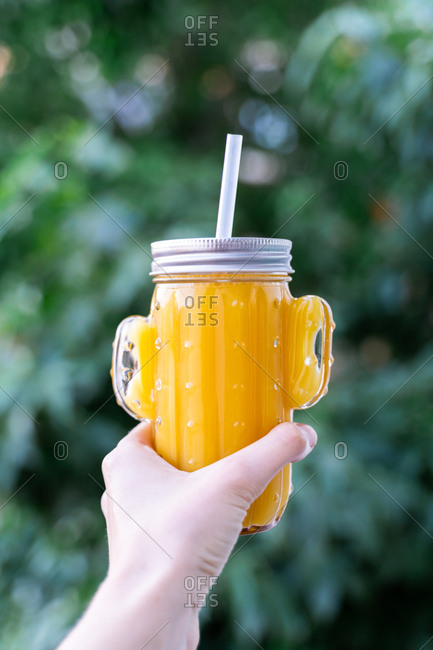 Crop hand holding cactus shaped mason jar with straw filled with yellow smoothie on blurred background of garden
