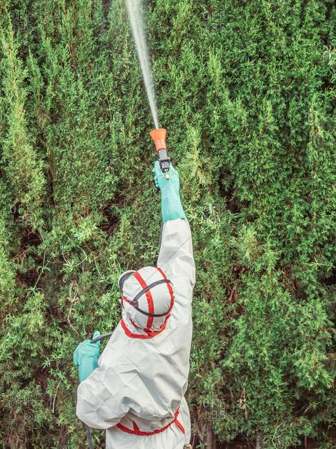 Fumigator in white uniform spraying substance on garden