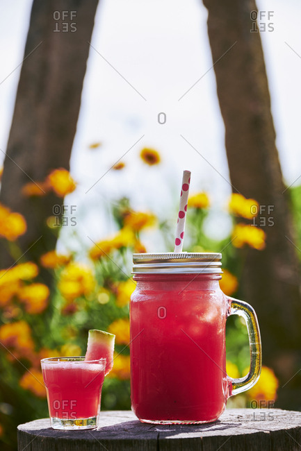 Close-up of fresh watermelon cocktail with glass on tree stump in garden