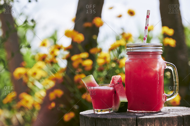 Close-up of fresh watermelon cocktail in glass and mason jar on tree stump in garden