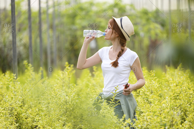 Beautiful young woman drinking water from bottle in the greenhouse