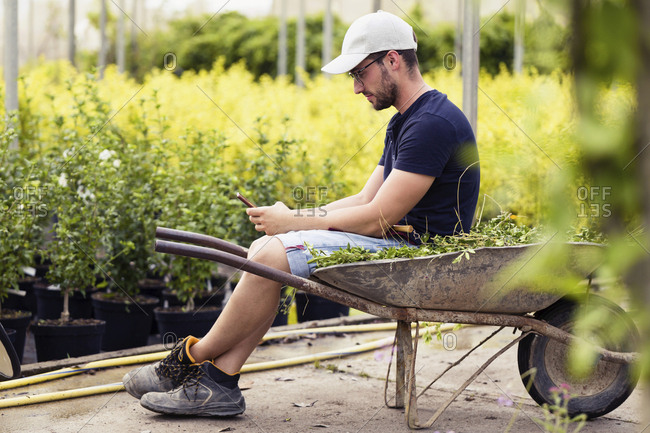 Young man taking a break and texting with smartphone in the greenhouse