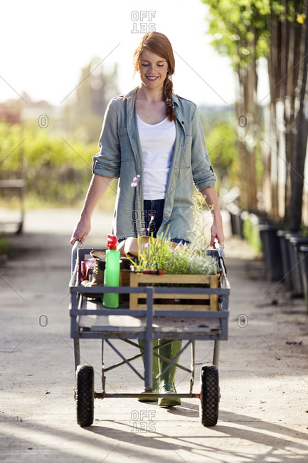 Beautiful woman transporting plants with a wheelbarrow in the greenhouse