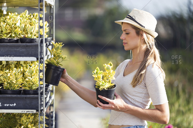 Beautiful young woman taking plants from a cart in the greenhouse