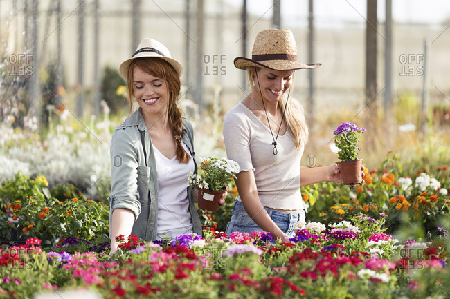 Two beautiful smiling women choosing flowers in the greenhouse