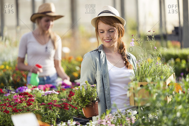 Beautiful young woman taking care of plants and flowers in the greenhouse