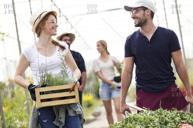 Smiling man and woman transporting plants with a wheelbarrow and wooden box in a greenhouse
