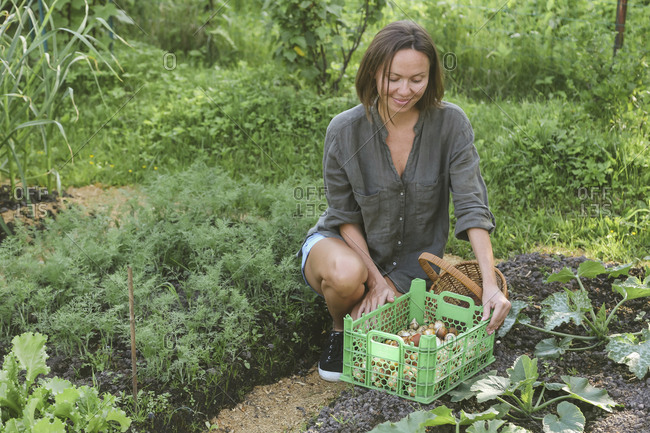 Smiling young woman harvesting onions in garden