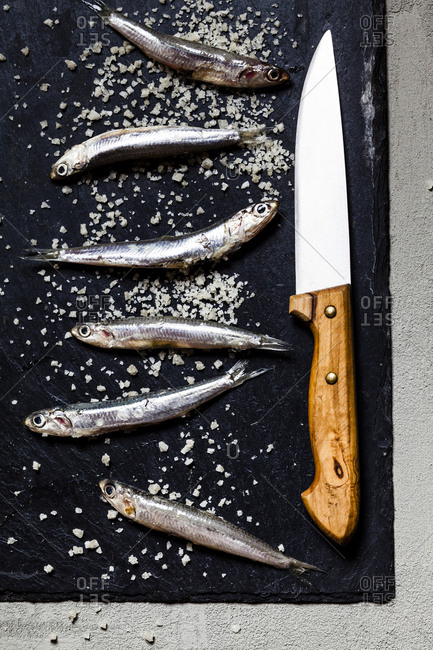 Close-up of fresh anchovies and sea salt with knife on slate rock