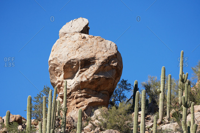 Large rock formation surrounded by cacti, Saguaro National Park, Arizona
