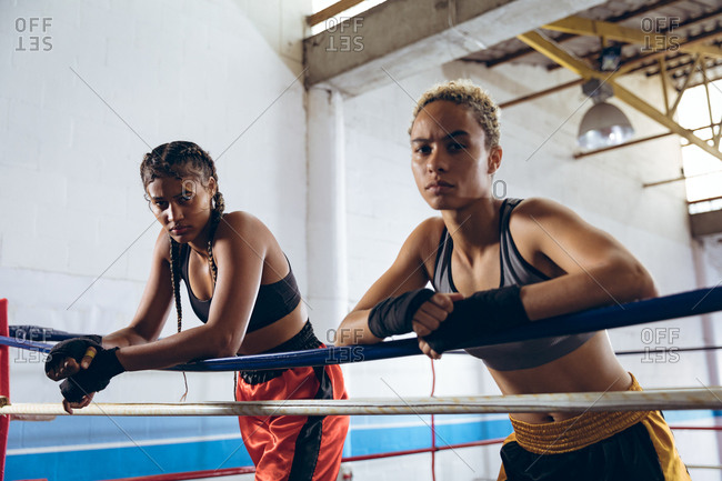 Female boxers leaning on ropes and looking at camera in boxing ring at boxing club
