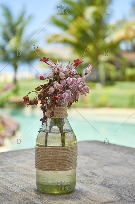 Rustic tropical flower arrangement, Sao Miguel do Gostoso, Rio Grande do Norte, Brazil