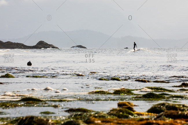 Surfer riding a little wave in the ocean