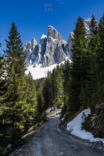 Road through forest under mountain in Dolomites, Italy