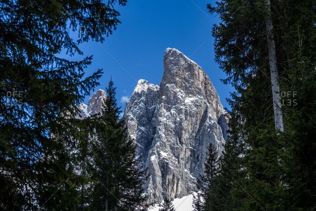 Trees in front of mountain peak in Dolomites, Italy