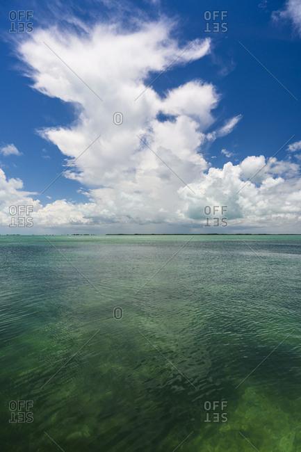 Seascape in Florida Keys, USA