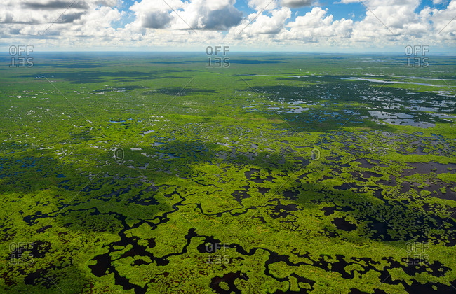Aerial view of Everglades National Park in Florida, USA