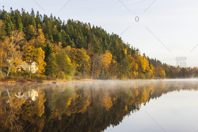 Autumn forest reflecting in lake
