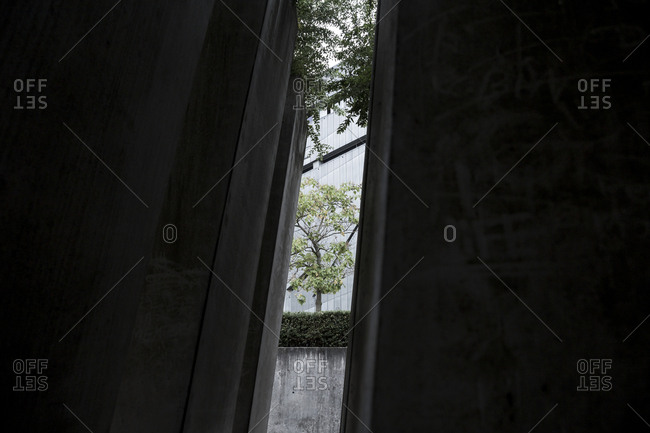 Inside the Garden of Exile in the Jewish Museum, Berlin, Germany.