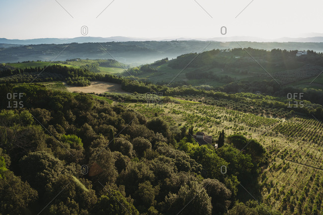 View On Tuscany Field