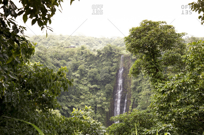 Papapapaitai waterfalls surrounded with tropical plants, Samoa
