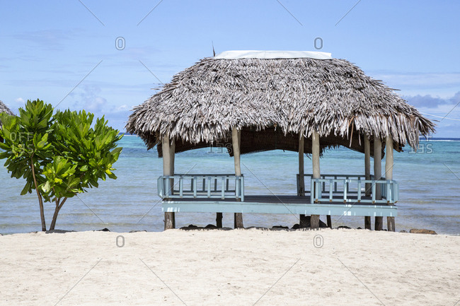 Beach hut and small tree on sandy beach of Samoa