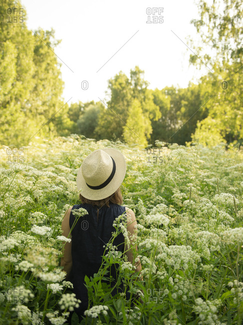 Rear view of woman in hat standing in field amidst trees by sunny day