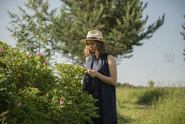 Young woman in hat standing in field near wild rose bush by sunny day