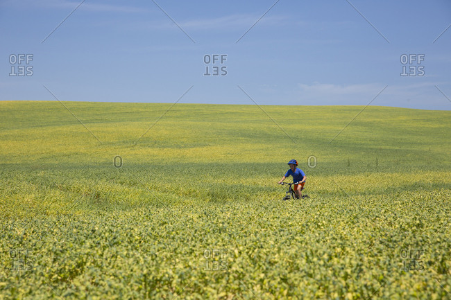 Boy, age 11 riding his mountain bike through a field of yellow flowers