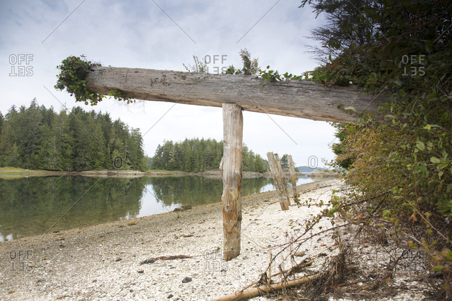 Mortuary poles of the First Nations on the shores of Village Island, British Columbia, Canada