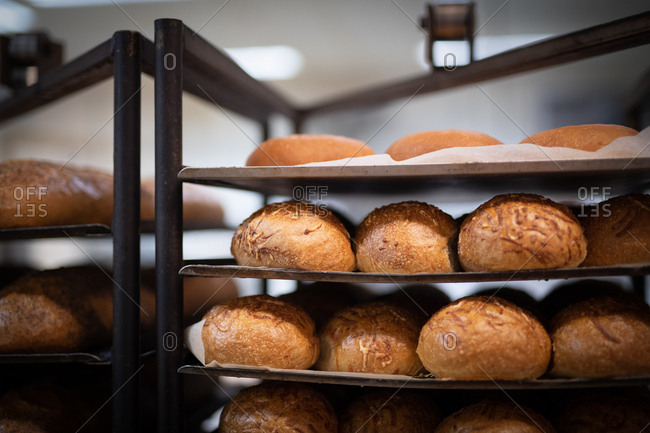 Fresh baked loaves of bread cooling on a rack in a bakery